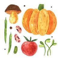 calabaza, champiñón, tomate, guisante, frijol, micro verde.
