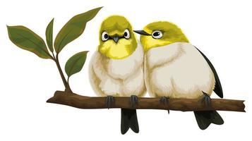 Two Birds Sitting Close on Branch vector