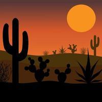 Desert cactus silhouette with sunset