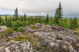Dolly Sods Wilderness in West Virginia