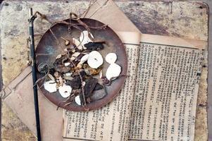 Chinese herbal medicine photo