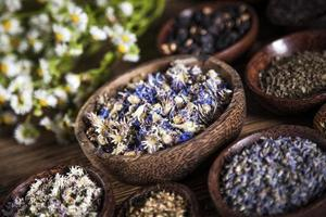The ancient Chinese medicine