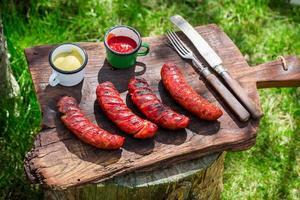 Salchichas al rojo vivo con mostaza y ketchup en el jardín