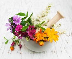 wild flower and herb leaf in mortar photo