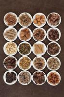 Traditional Chinese Herbs photo