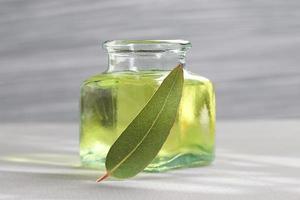 Eucalyptus essential oil photo