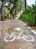 Concrete bike lane among green plants