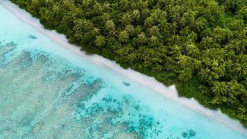 Aerial view of seashore  photo