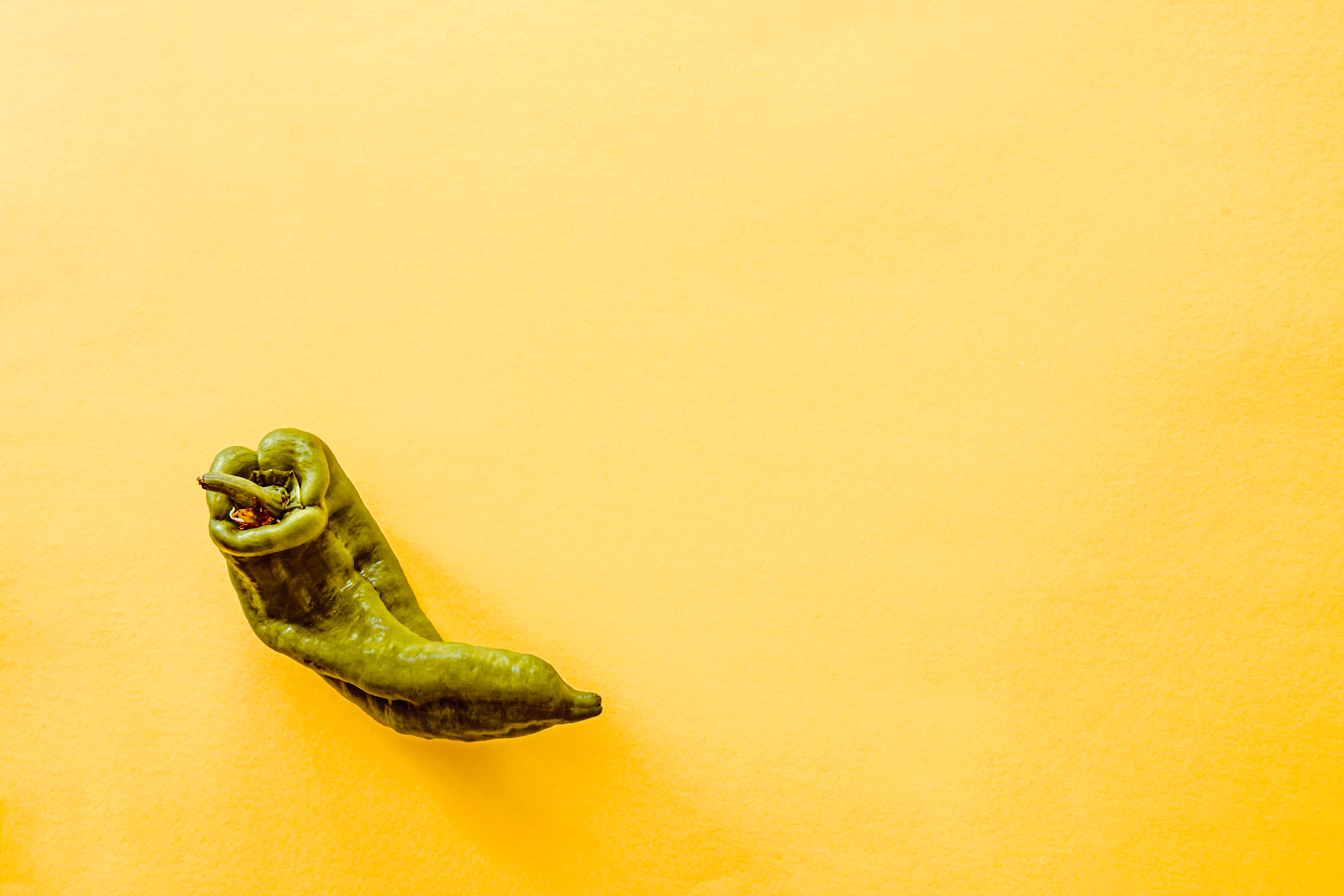 A top view of a green pepper  photo