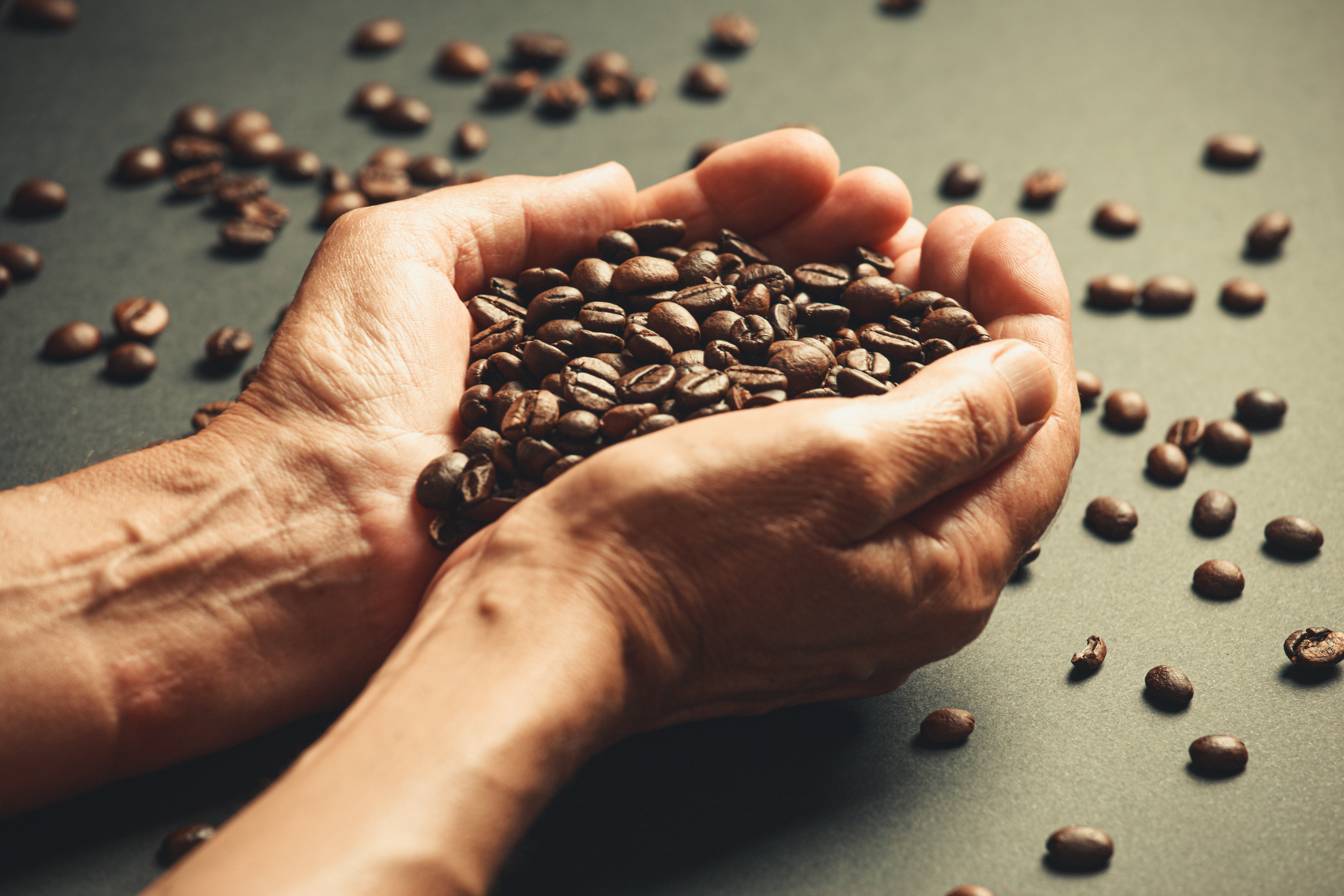 Old hands holding a lot of coffee beans