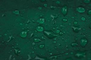 Rain drops on green leaf