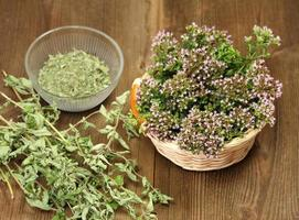 Fresh and dried herbs photo