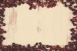 Frame of autumn fresh elderberry and copy space for text