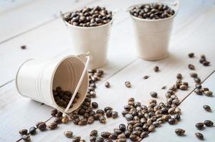 semillas de ricino-ricinus communis foto