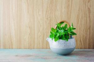 Fresh mint in tea pot