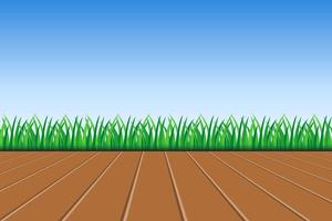 Background of green grass and blue sky  vector