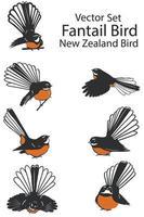 New Zealand fantail bird set vector