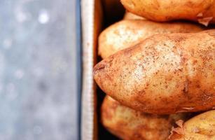 Fresh potatoes in paper box crate. Bokeh background.