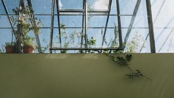 Greenhouse in Portugal photo