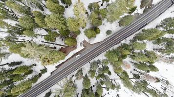 Aerial view of a road in the winter forest