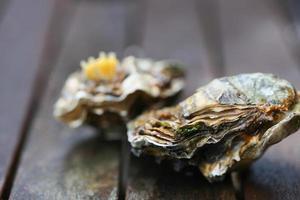 rohe Austern