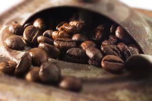 coffeebeans photo