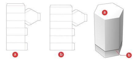 caja de botella hexagonal vector