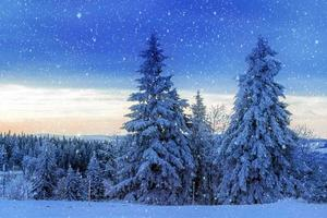 Winter landscape scene photo