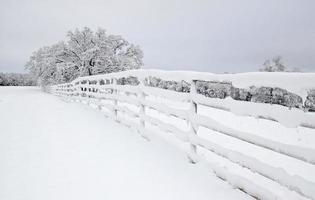 Snow covered country fence in rural Texas