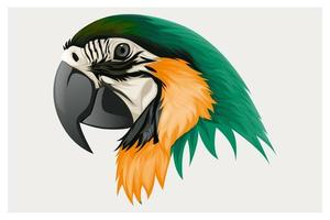 Orange and green parrot head drawing