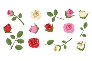 elementos de rosa aislados vector