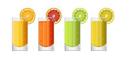 Glass of fresh fruit juice vector