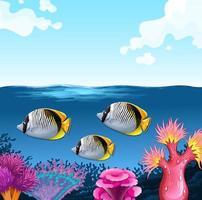 três peixes nadando sob o oceano