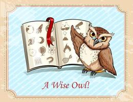 Idiom a wise owl vector