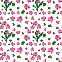 Seamless pattern with cute pink flowers vector