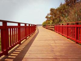 Promenade in summer