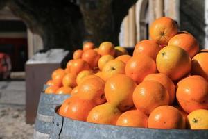 Close-up of barrels of oranges
