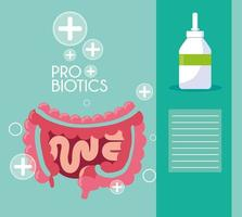 Digestive system with probiotics  vector