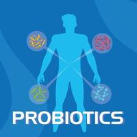 antecedentes de información de probióticos vector