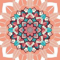 Mandala patterns on brown background  vector