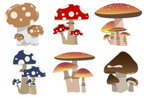 Mushrooms isolated on white  vector