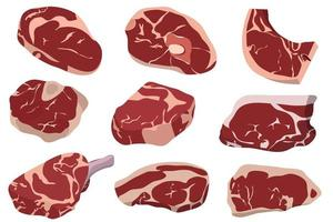 Fresh meat isolated  vector