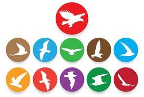 siluetas de aves voladoras en círculos de colores vector