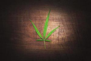 Marijuana leaf on floor