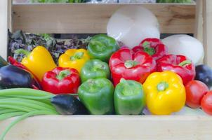 Assorted bell peppers photo