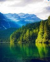 Lake and conifers on mountains