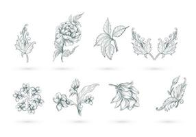 Abstract artistic floral set vector