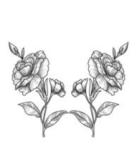 Beautiful floral sketch