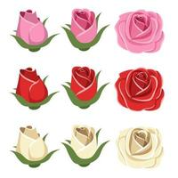 Vintage roses isolated vector