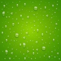 Water drops on background vector